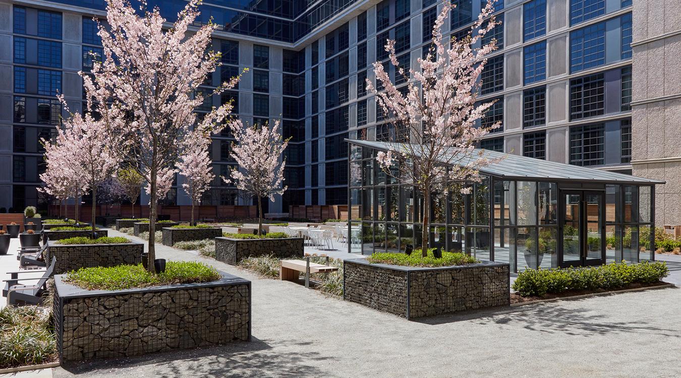 ARC courtyard